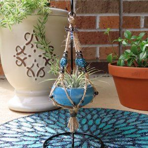 Mini Desktop Hanging Air Plant - Dragonfly Charm